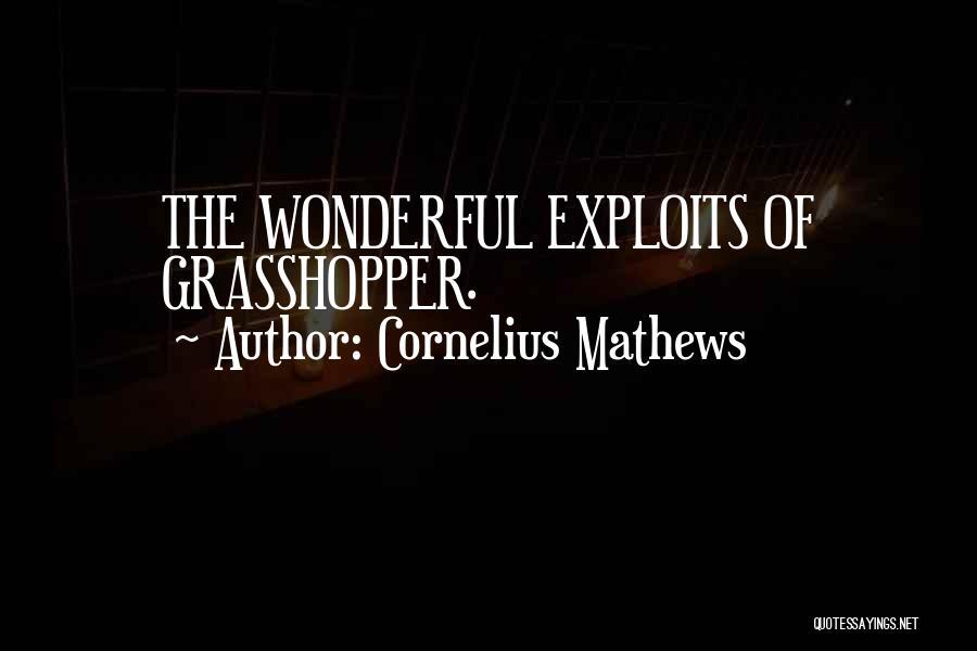 Cornelius Mathews Quotes 1950535