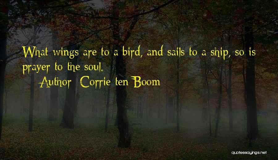 Corrie Ten Boom Quotes 1147623