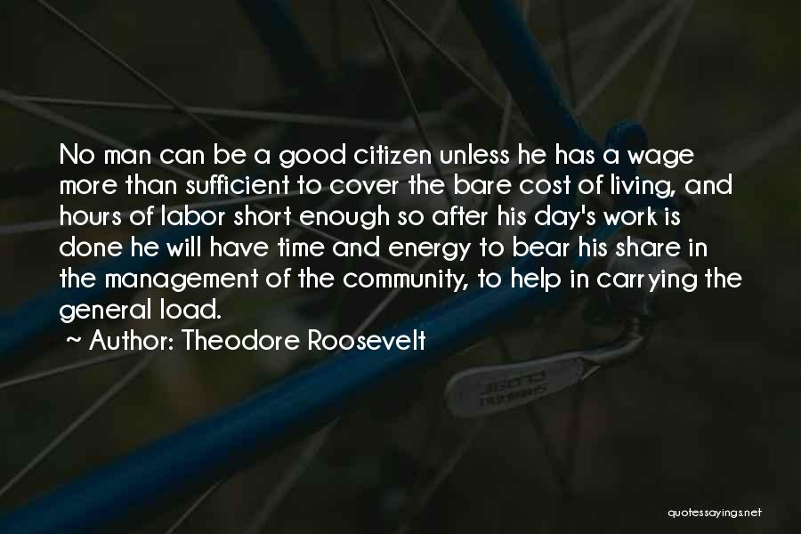 Cost Management Quotes By Theodore Roosevelt