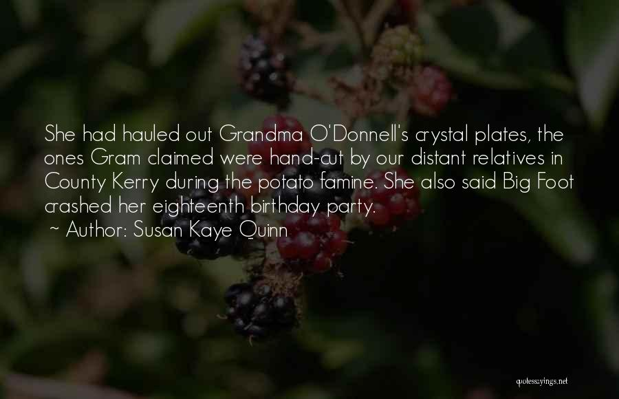 County Kerry Quotes By Susan Kaye Quinn
