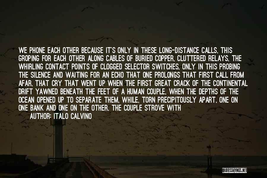 Couple Separate Quotes By Italo Calvino