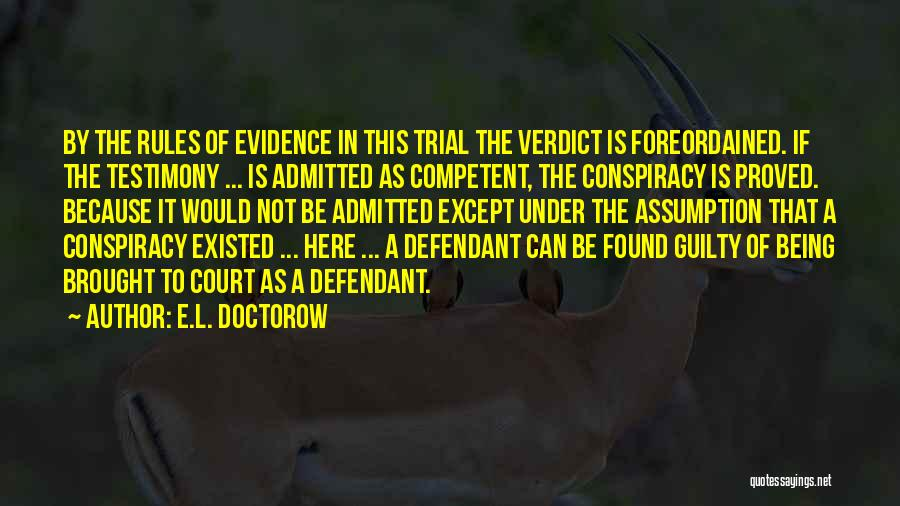 Court Testimony Quotes By E.L. Doctorow