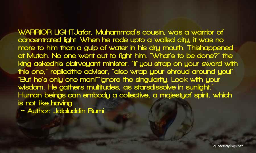 Cousin Quotes By Jalaluddin Rumi