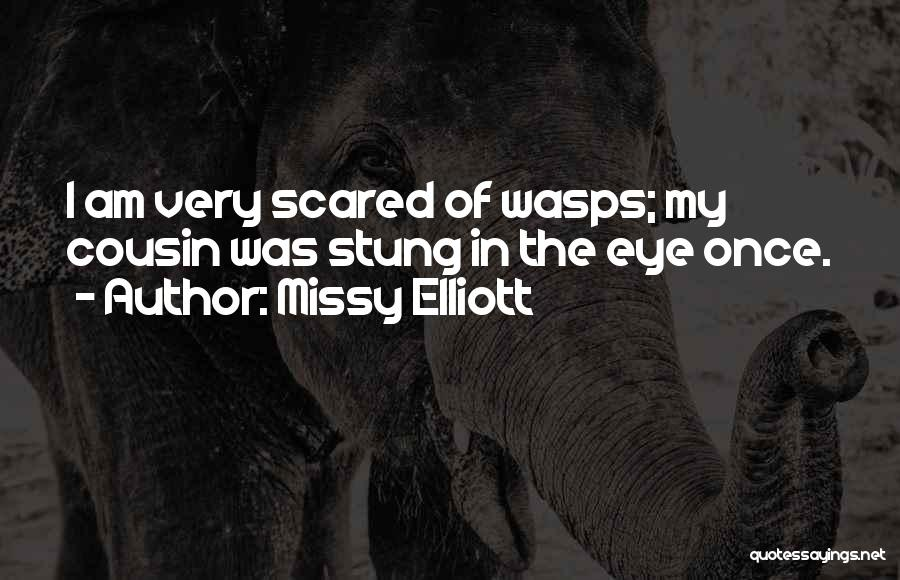 Cousin Quotes By Missy Elliott