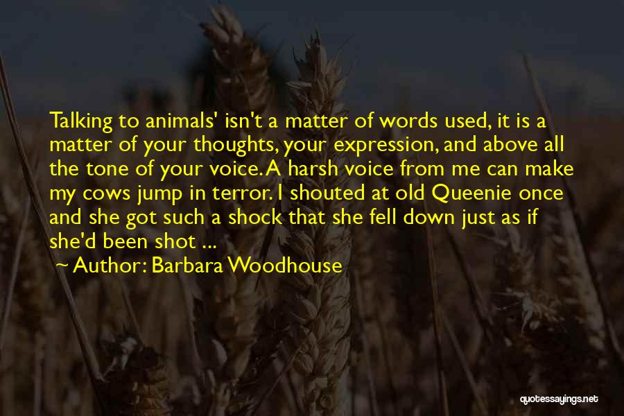 Cows Quotes By Barbara Woodhouse