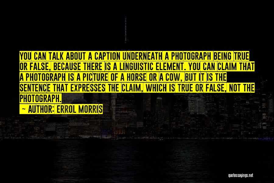 Cows Quotes By Errol Morris