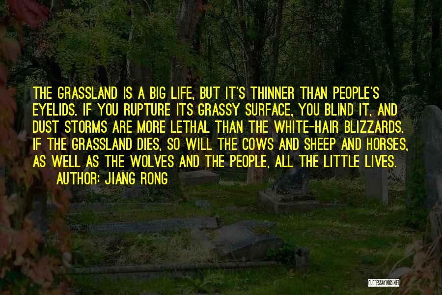 Cows Quotes By Jiang Rong