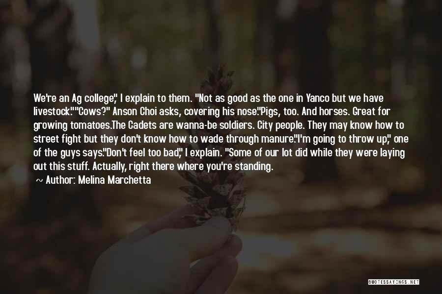 Cows Quotes By Melina Marchetta