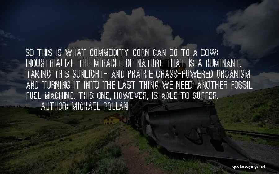 Cows Quotes By Michael Pollan