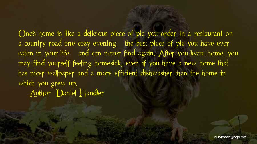 Cozy Evening Quotes By Daniel Handler