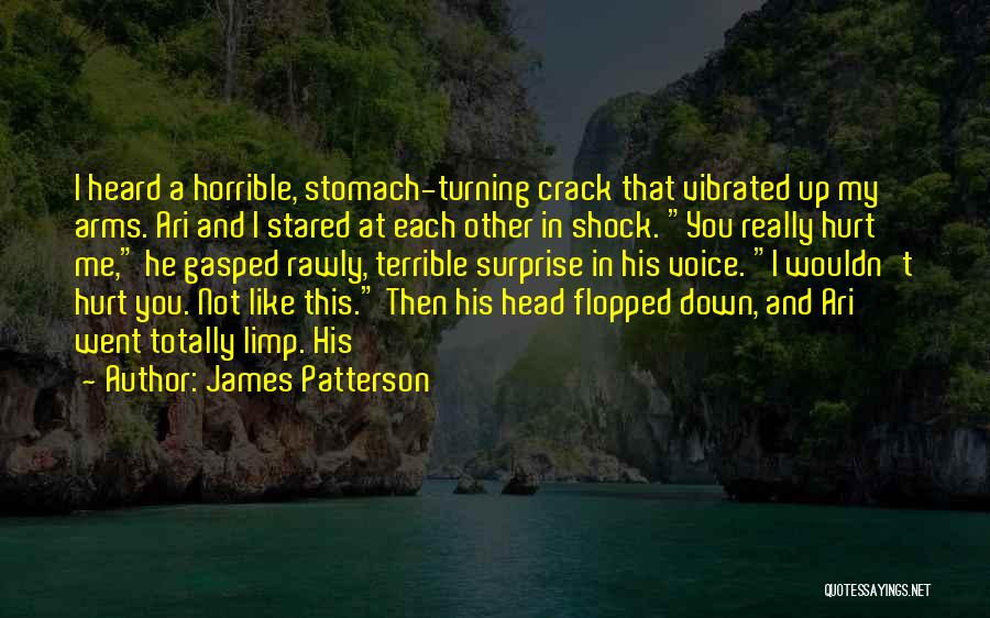 Crack Me Up Quotes By James Patterson