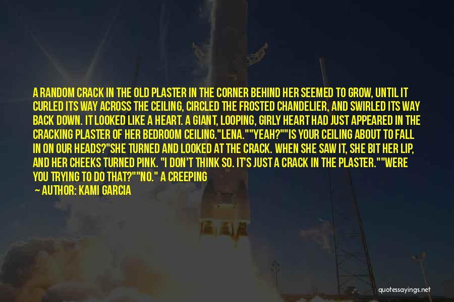 Crack Spread Quotes By Kami Garcia