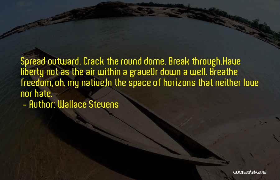 Crack Spread Quotes By Wallace Stevens