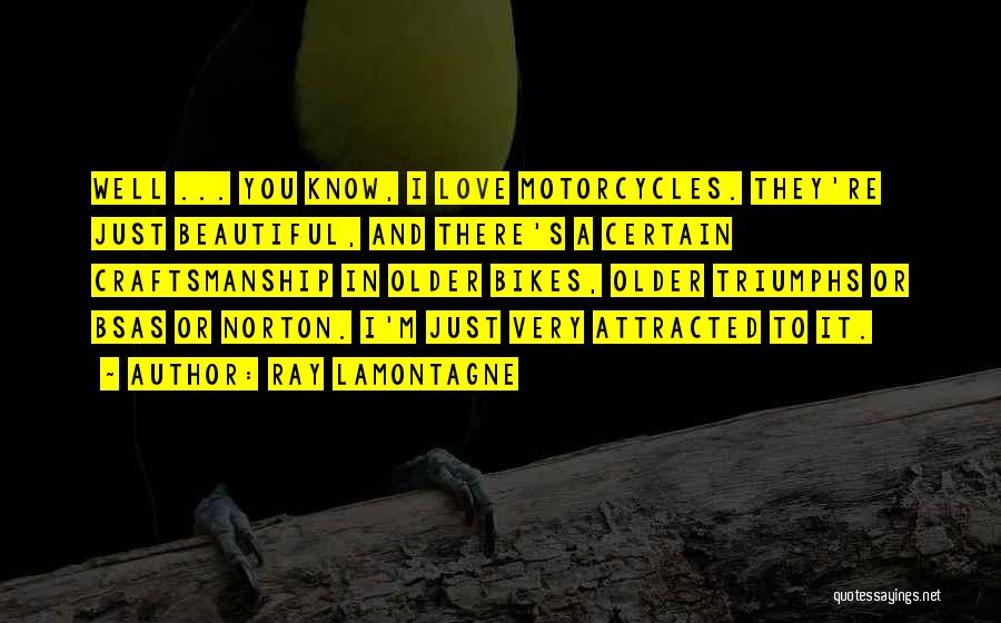 Craftsmanship Quotes By Ray Lamontagne