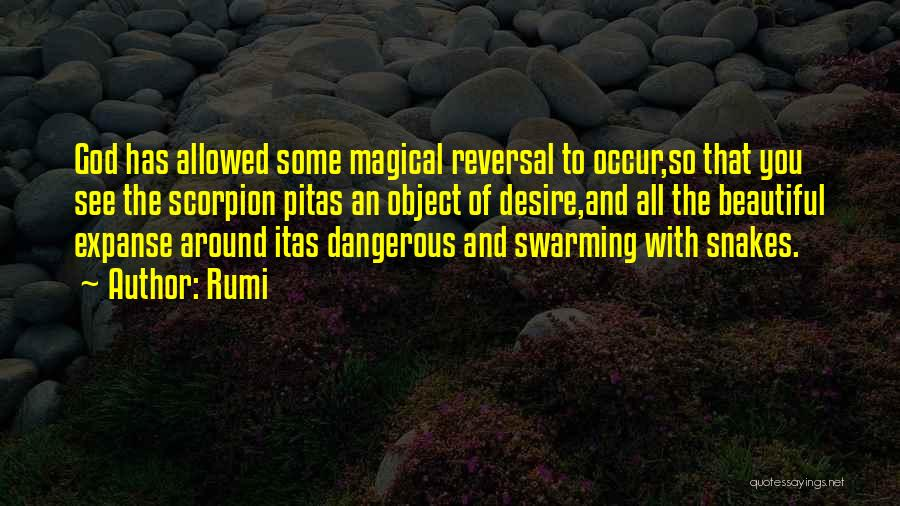 Craftsmanship Quotes By Rumi