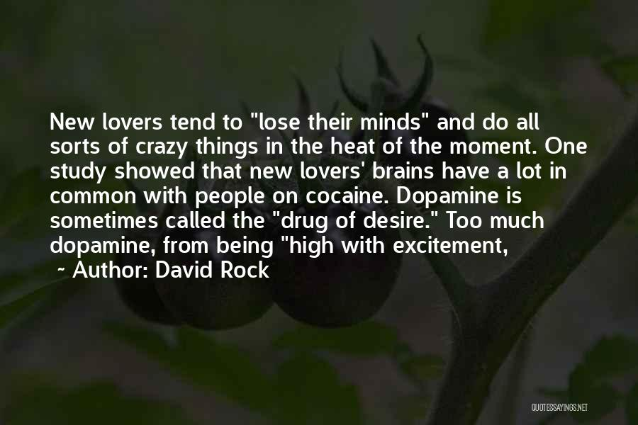 Crazy Minds Quotes By David Rock