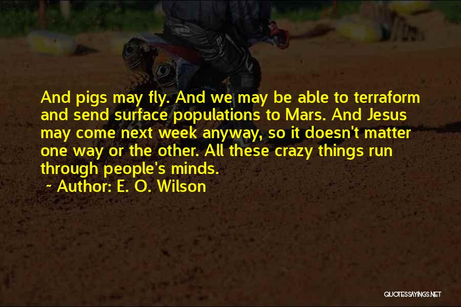 Crazy Minds Quotes By E. O. Wilson
