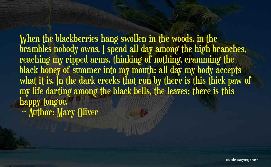 Creeks Quotes By Mary Oliver