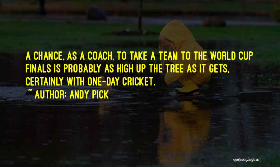 Cricket Team Quotes By Andy Pick