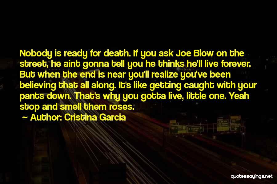 Cristina Garcia Quotes 1056170