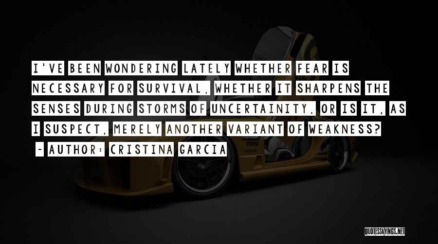 Cristina Garcia Quotes 1287137
