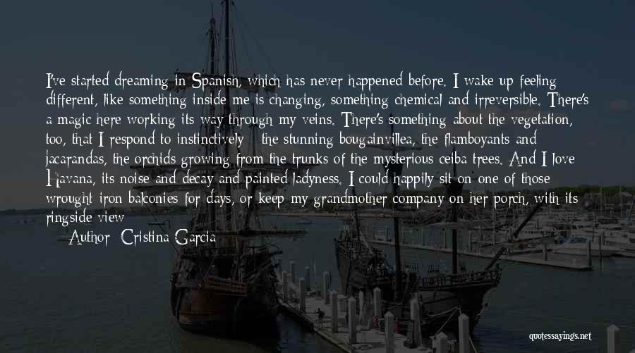 Cristina Garcia Quotes 1933683