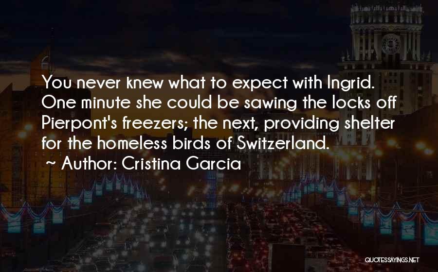 Cristina Garcia Quotes 2029921