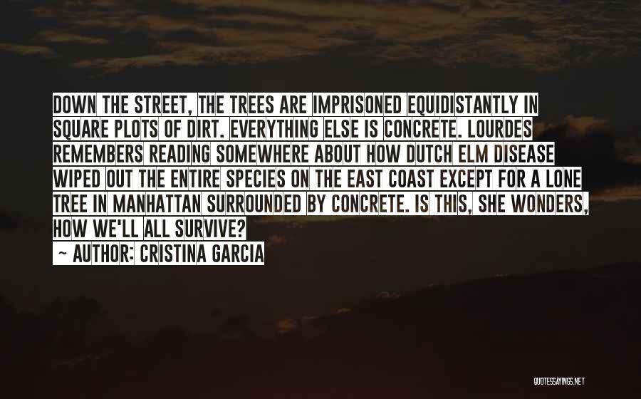 Cristina Garcia Quotes 2110701