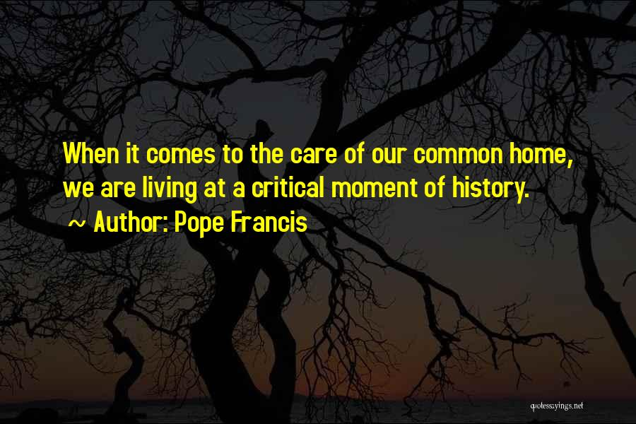 Critical Care Quotes By Pope Francis