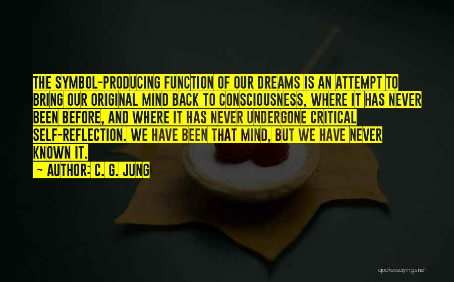 Critical Reflection Quotes By C. G. Jung