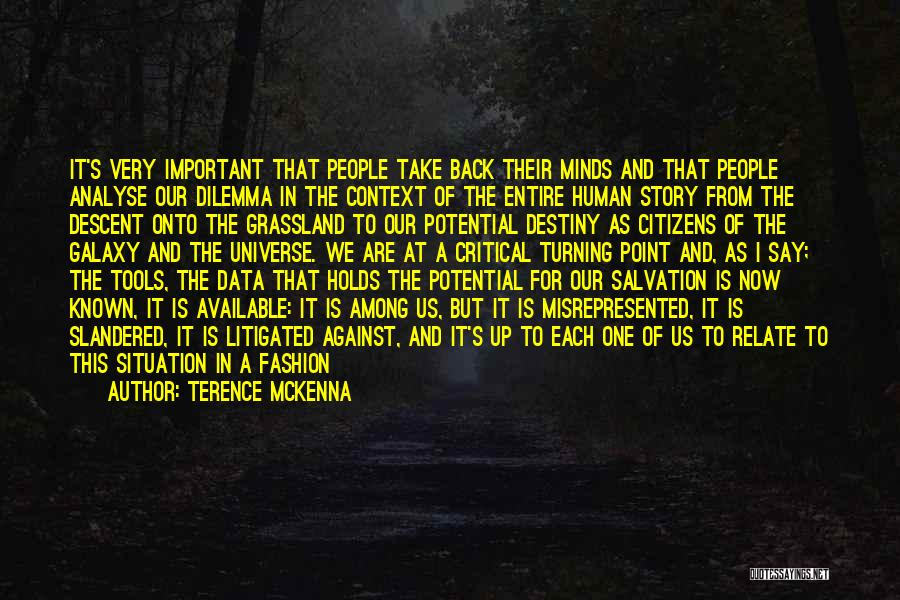 Critical Situation Quotes By Terence McKenna