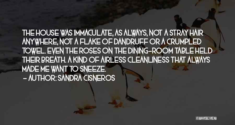 Crumpled Quotes By Sandra Cisneros