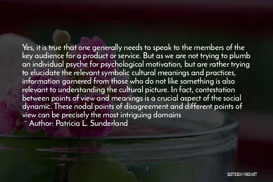 Cultural Understanding Quotes By Patricia L. Sunderland