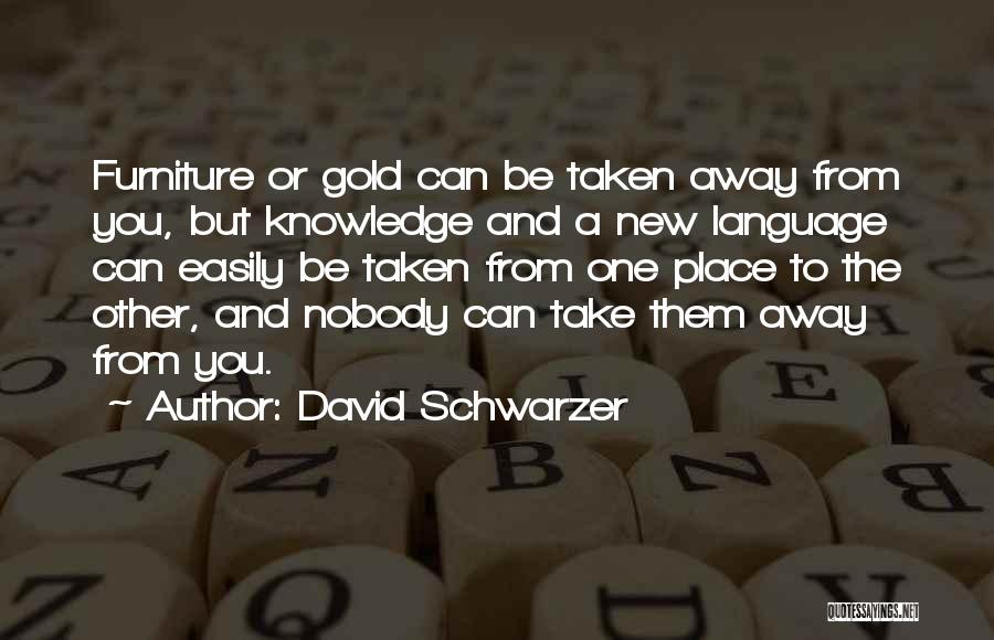 Culture And Diversity Quotes By David Schwarzer