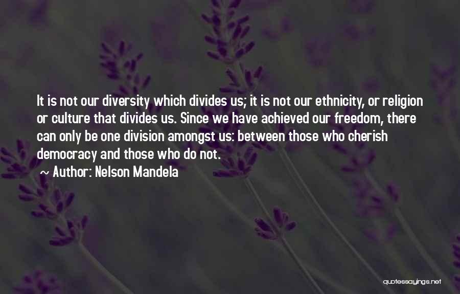 Culture And Diversity Quotes By Nelson Mandela