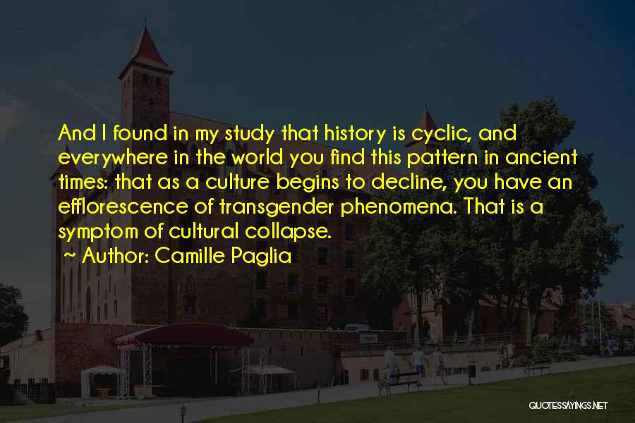 Culture In Decline Quotes By Camille Paglia