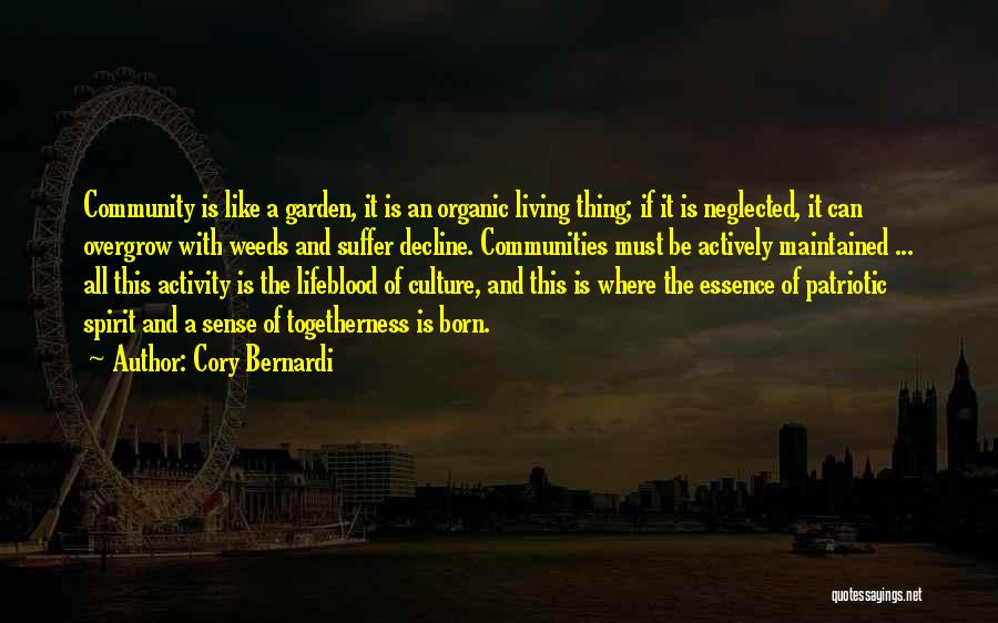 Culture In Decline Quotes By Cory Bernardi