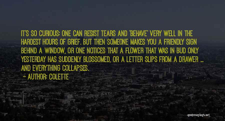Curiosity And Love Quotes By Colette