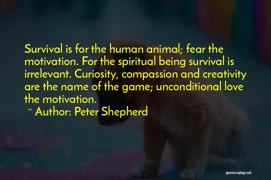 Curiosity And Love Quotes By Peter Shepherd