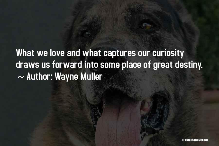 Curiosity And Love Quotes By Wayne Muller