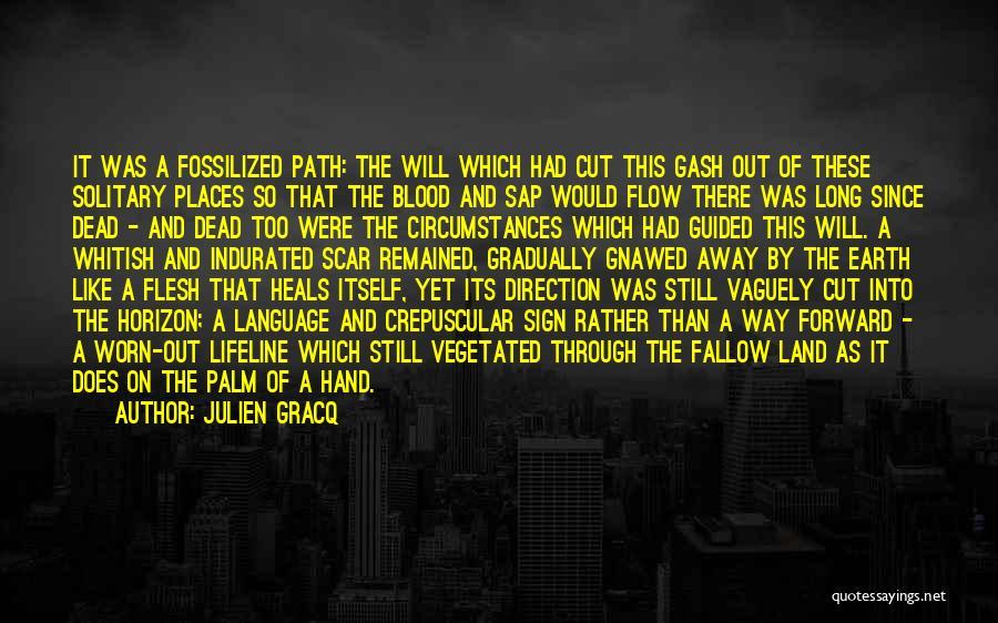 Cut Out Quotes By Julien Gracq