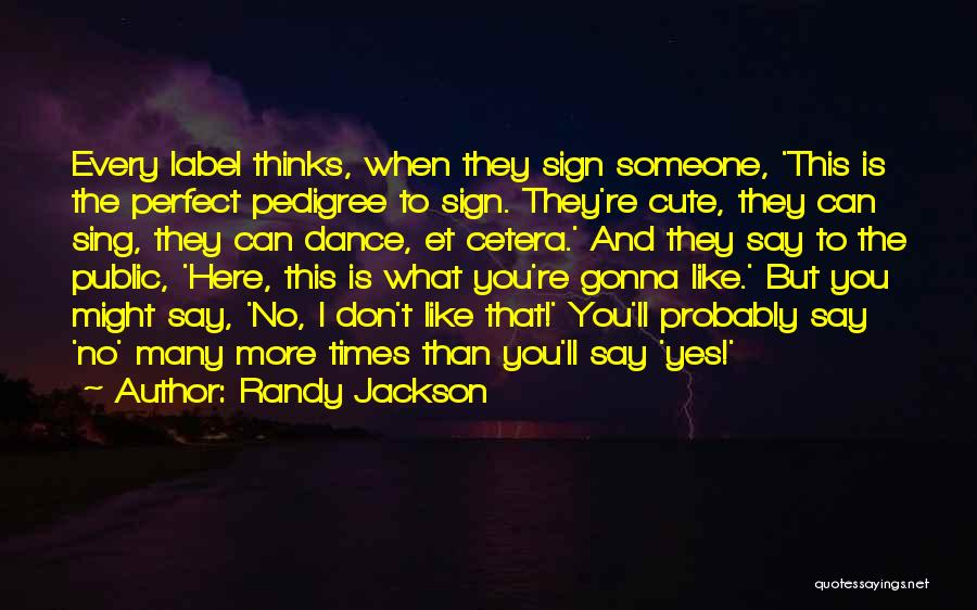 Cute Not Perfect Quotes By Randy Jackson