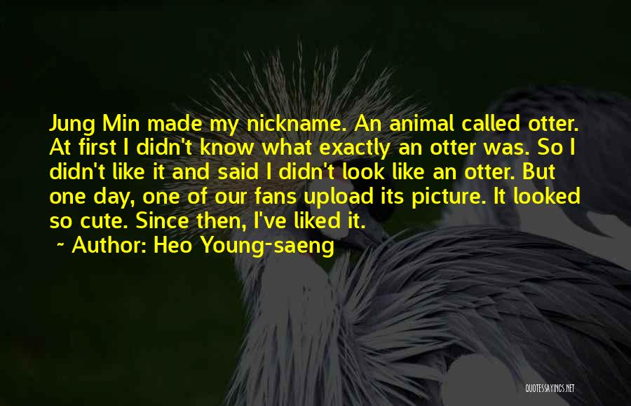 Cute Otter Quotes By Heo Young-saeng