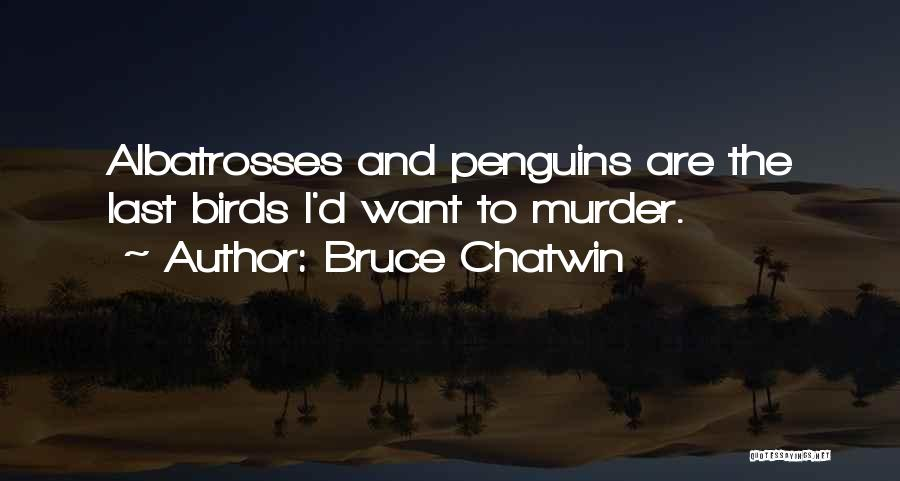 Cute Penguins Quotes By Bruce Chatwin