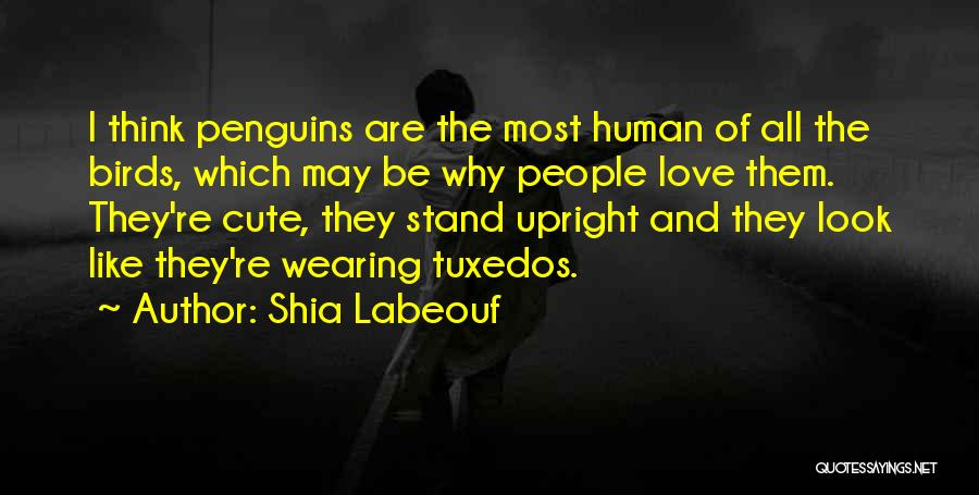 Cute Penguins Quotes By Shia Labeouf