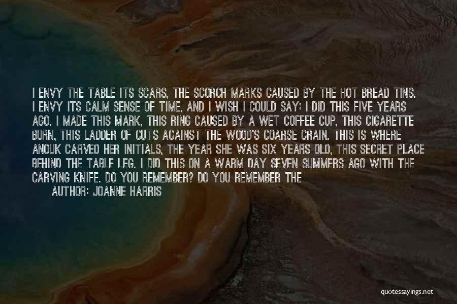 Cuts And Scars Quotes By Joanne Harris