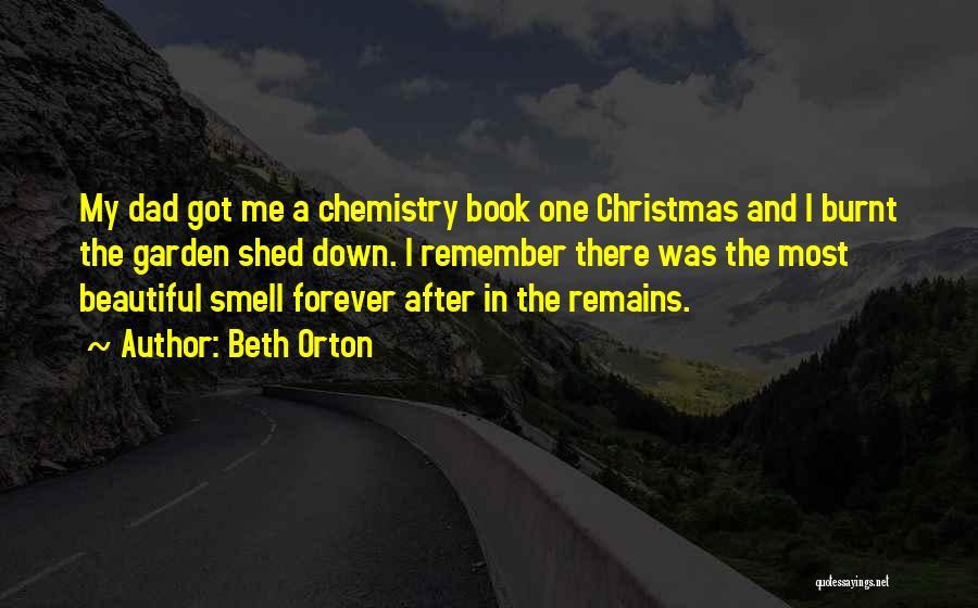 Dad For Christmas Quotes By Beth Orton