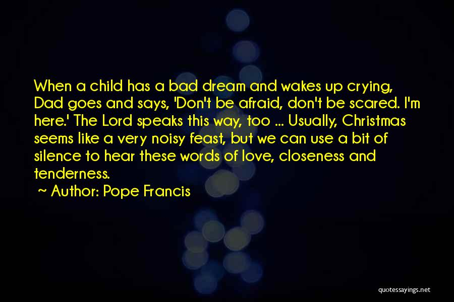 Dad For Christmas Quotes By Pope Francis