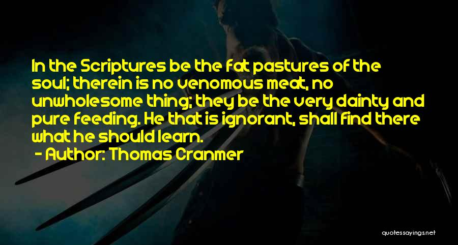 Dainty Quotes By Thomas Cranmer