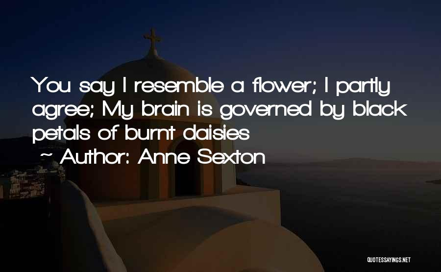 Top 16 Quotes & Sayings About Daisies Flower